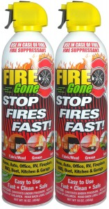 Fire Gone 2NBFG2704 WhiteRed Fire Extinguisher - 16 oz., (Pack of 2)