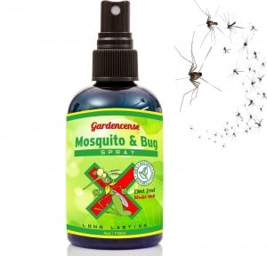 Top 10 Best Insect Repellents For Indoor & Outdoor Activity In 2017 Review