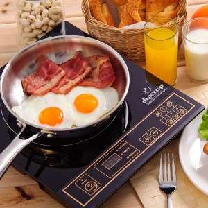 Top 10 Best Induction Cook-Tops In 2017 Review