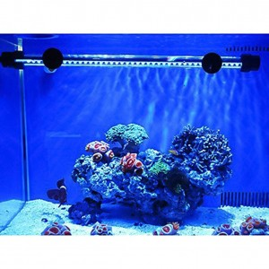 Top 10 best Fish Tank Accessories for Decorations In 2018 Reviews