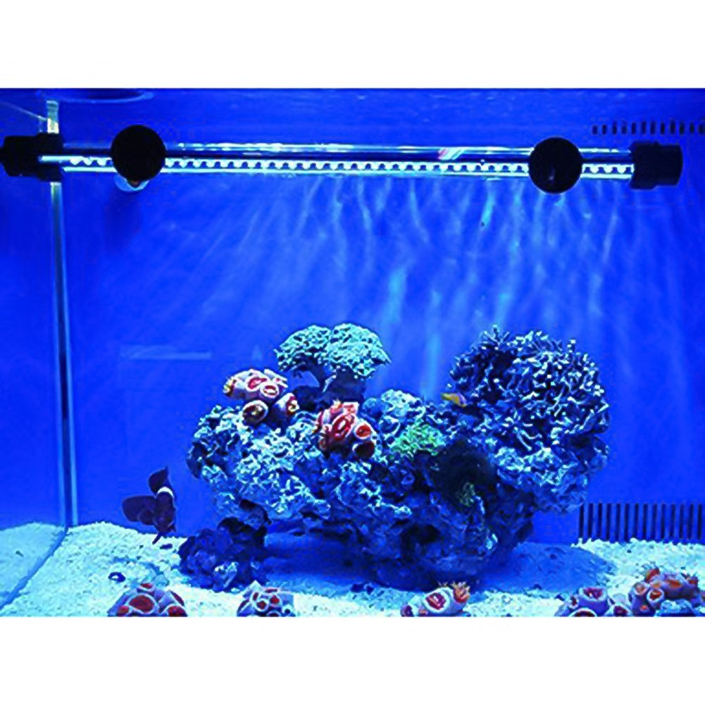 Top 10 Best Fish Tank Accessories Amp Decorations In 2015