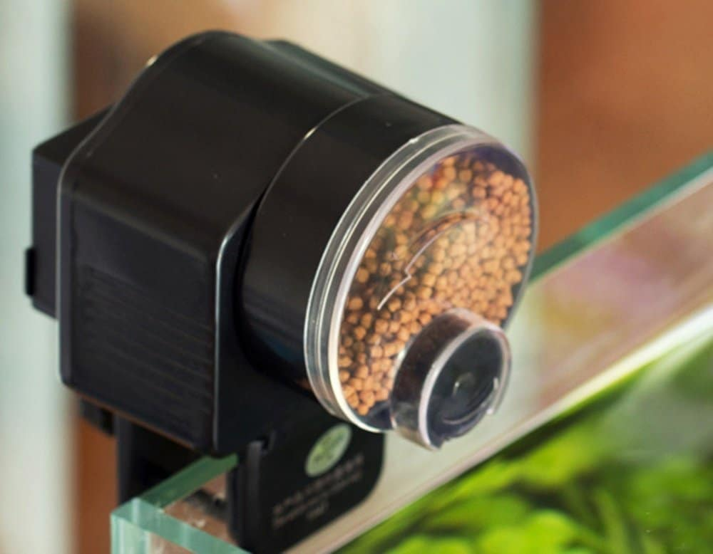pond auto automatic amazing amazon fish feeder