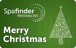 Spafinder Wellness 365 Gift Cards - E-mail Delivery