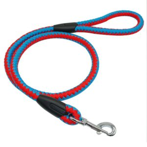 Didog® Braided Nylon Rope Dog Pet Training Leash Lead Heavy Duty