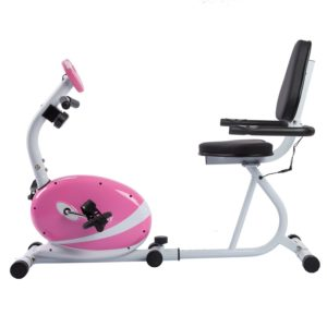 Sunny Health & Fitness Pink Magnetic Recumbent Exercise Bike