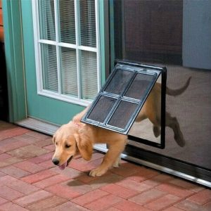 Top 10 Best Automatic Electric Dog Door 2018 Review