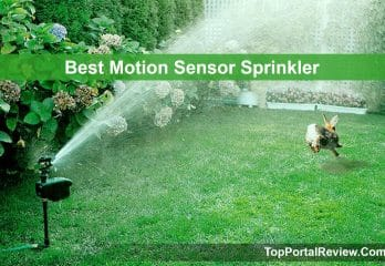 Top 10 Best Motion Sensor Sprinklers 2020 Review